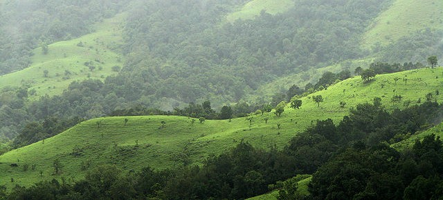RWC responds to the Western Ghats Ecology Expert Panel Report