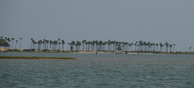 RWC sees red in proposed port development near Pulicat Bird Sanctuary
