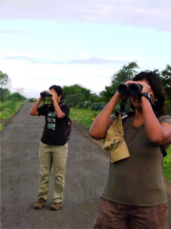 Bird watchers_ed